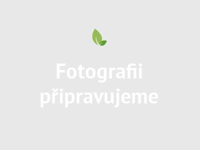 Mama Rosa Dětský nákrčník - Tučňáci lila